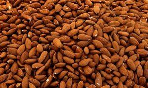 almonds-1571810__180
