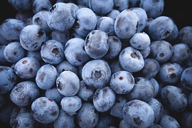 blueberries-690072__180