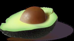 avocado-161822_1280