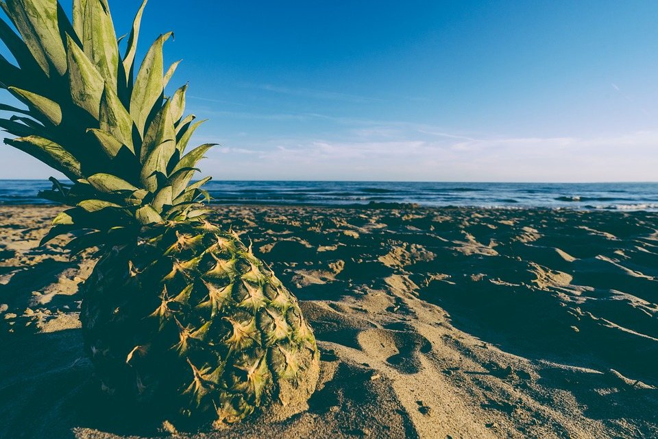 Pineapple fight inflammation in the body