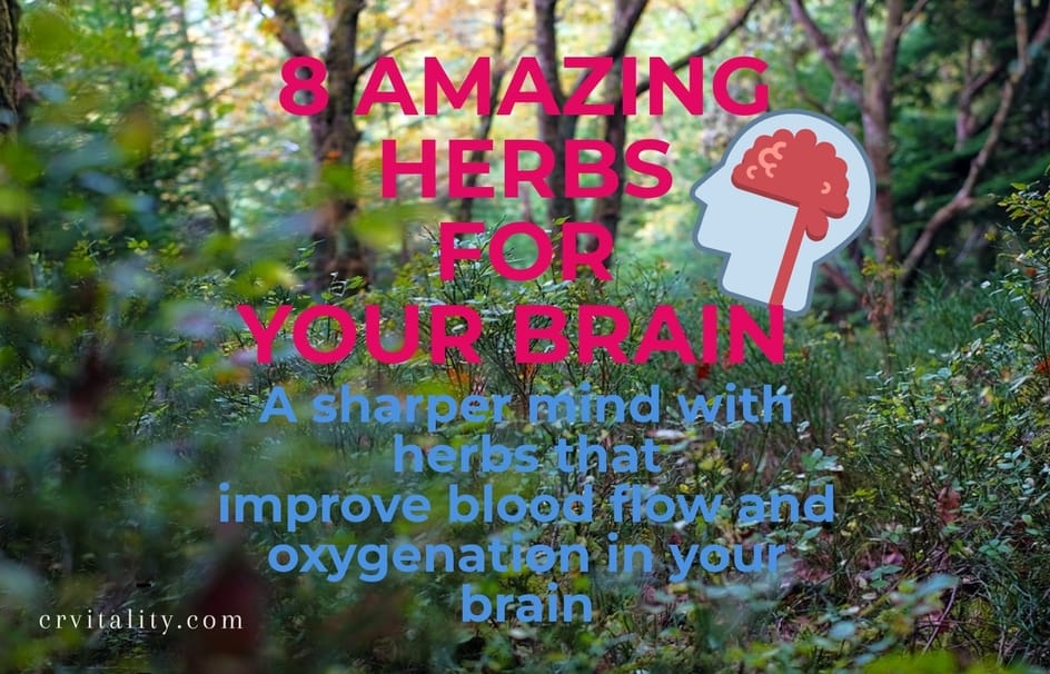 herbs for good blood flow to the brain