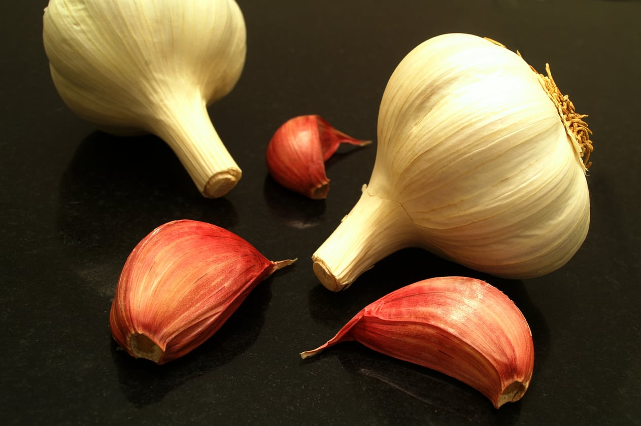 garlic reduces blood pressure is hypertensive patients