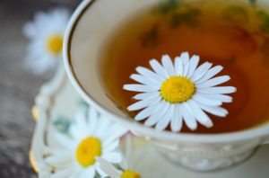 chamomile helps relax you