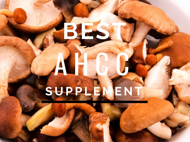 AHCC Supplement high in alpha glucans for absorption