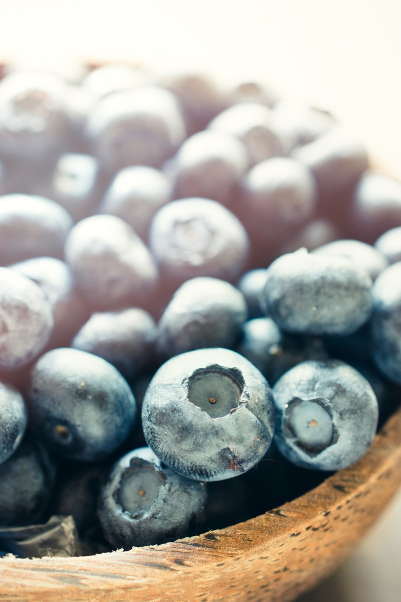 bilberry supplement extract for eye health